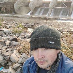 Андрей, 29 лет, Жирновск