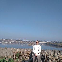 Ярослав, 30 лет, Новомосковск