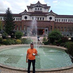 Евгений, 31 год, Заинск