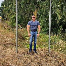 Юрий, 45 лет, Ступино