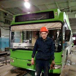 Дима, 36 лет, Красноярск
