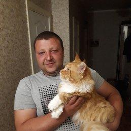 Сергей, 33 года, Мценск