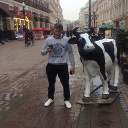 Алексей, 31 год, Ясногорск