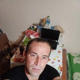 Максимильян, 36 лет, Уфа