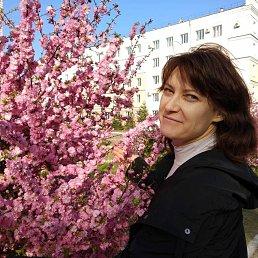 Надежда, 51 год, Фрязино