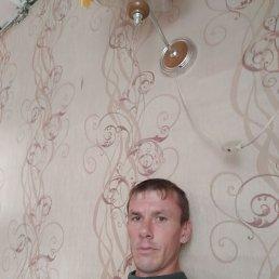 Максим, 35 лет, Углич