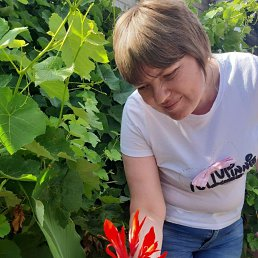 Алексндра, 31 год, Селидово