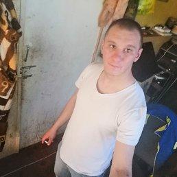 Дмитрий, 28 лет, Ростов