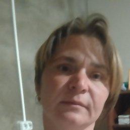 Александра, 39 лет, Нижний Новгород