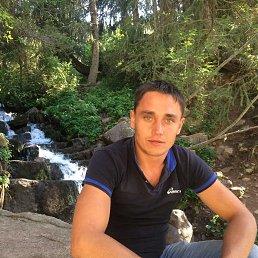 Владимир, 31 год, Омск