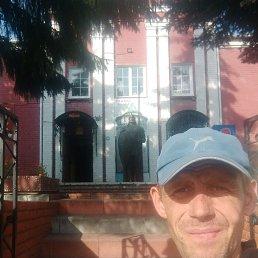 Иван, 36 лет, Егорьевск