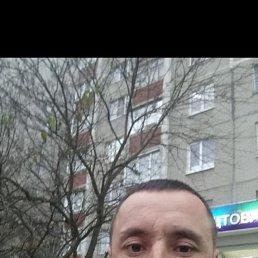 Александр, 35 лет, Воронеж