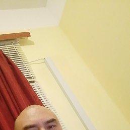 Сергей, 39 лет, Волгоград