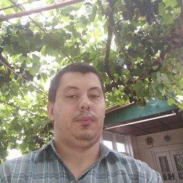 Владимир, 29 лет, Шабо