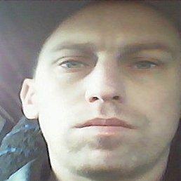 Роман, 33 года, Белгород