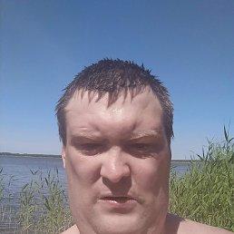 Виталий, 37 лет, Тюмень