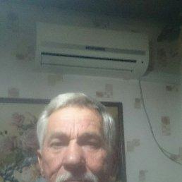 Юрий, 64 года, Краснодар