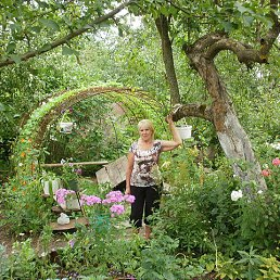 Татьяна, 65 лет, Волосово