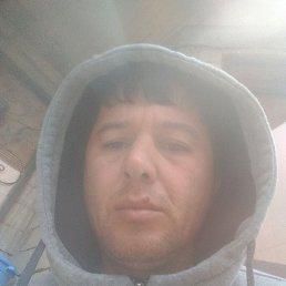 Мурат, 34 года, Москва