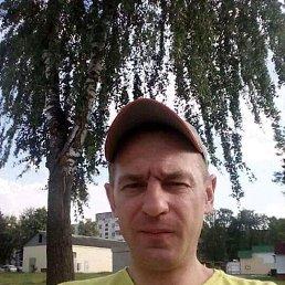 Александр, 42 года, Кромы