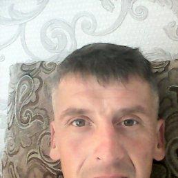 Андрей, 40 лет, Боровичи