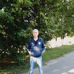 Александр, 42 года, Димитровград