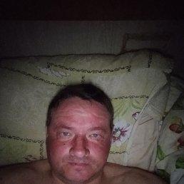 Антон, 41 год, Барнаул