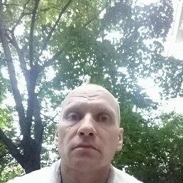 Павел, 46 лет, Реутов