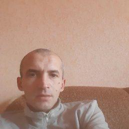 Алексей, 36 лет, Рубцовск