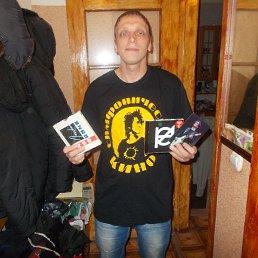 Александр, 33 года, Электрогорск