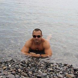Александр, 44 года, Сочи