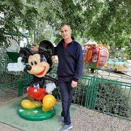 Роман, 39 лет, Таганрог