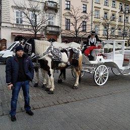Рома, 30 лет, Лохвица