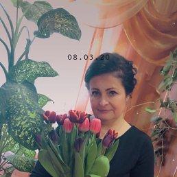 Светлана, 48 лет, Вязьма