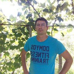Sasha, 32 года, Берегово