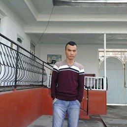 Боец, 37 лет, Балашиха