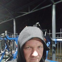 Вячеслав, 41 год, Сосновый Бор