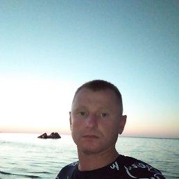 Василь, 35 лет, Бережаны
