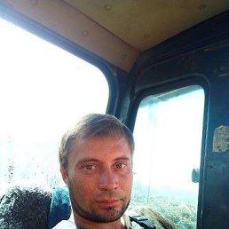 Рома Рома, 36 лет, Москва