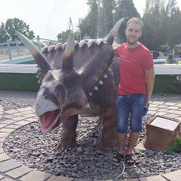 Дмитрий, 29 лет, Херсон