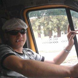 Николай, 34 года, Новомосковск