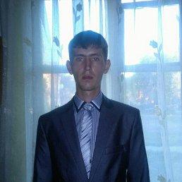 Антон, Кемерово, 28 лет