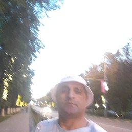 Шамиль, 47 лет, Видное