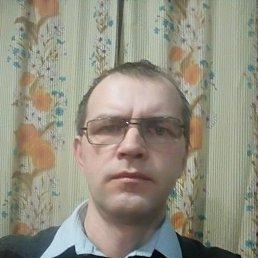 Виктор, 44 года, Калининград