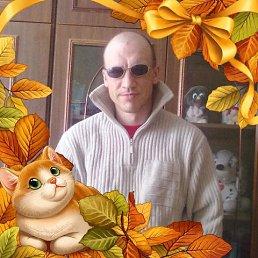 Vladimir, 40 лет, Лесной