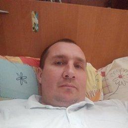 Руслан, 40 лет, Киев
