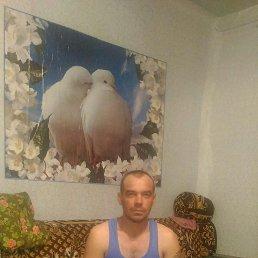 Александр, 32 года, Ирбит