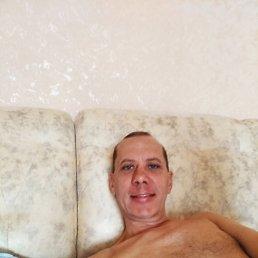 Олег, 43 года, Владивосток