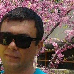 Алексей, 44 года, Новая Каховка