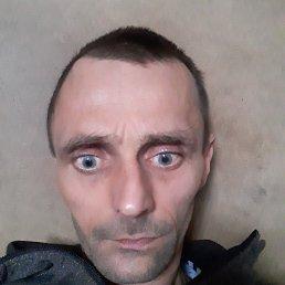 Александр, 43 года, Ростов
